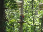 Trees Adventure Den 141