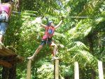 Trees Adventure Den 202